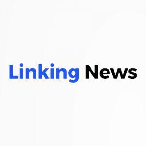 Linking News Logo
